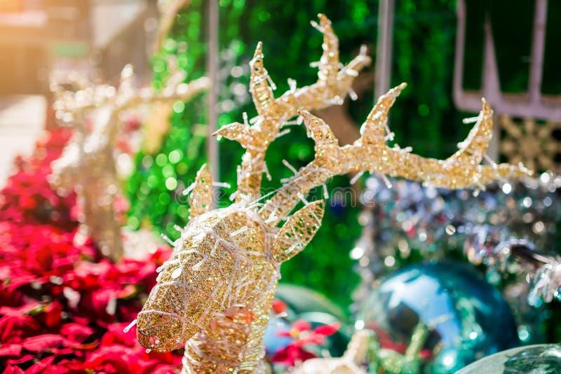 Reno adornado con el árbol rojo borroso del poinesettia para el fondo del día de fiesta de la Navidad imagen de archivo