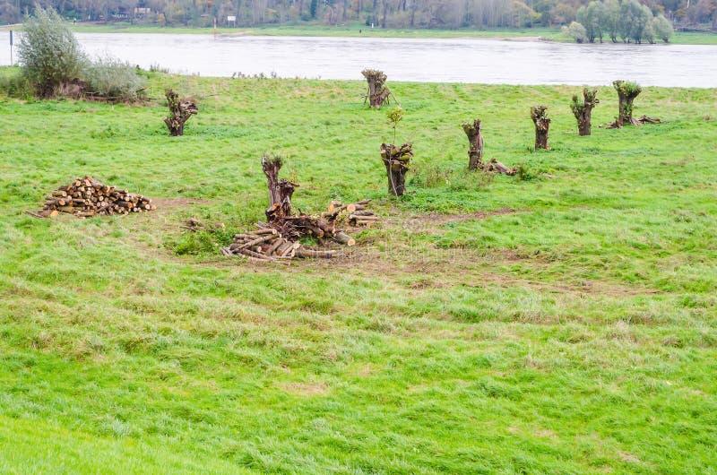 Reno das zona sujeitas a inundações, rio perto de Zons imagens de stock royalty free