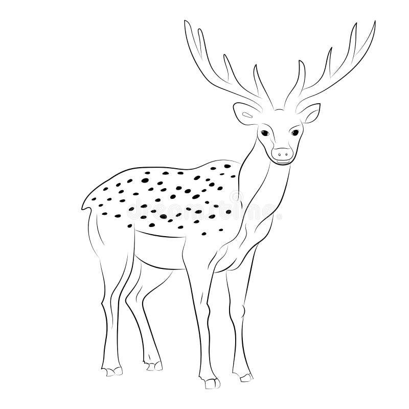 Reno manchado dibujado mano Ciervos lindos del bosquejo en blanco libre illustration