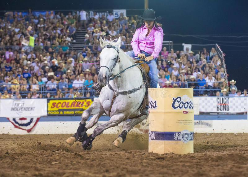 Reno Rodeo royaltyfria bilder