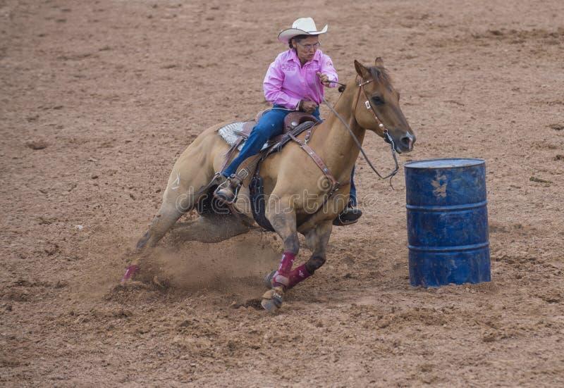 Reno Rodeo royalty free stock photography