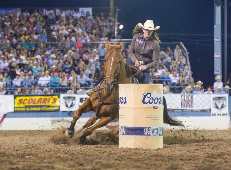Reno Rodeo royalty free stock photos