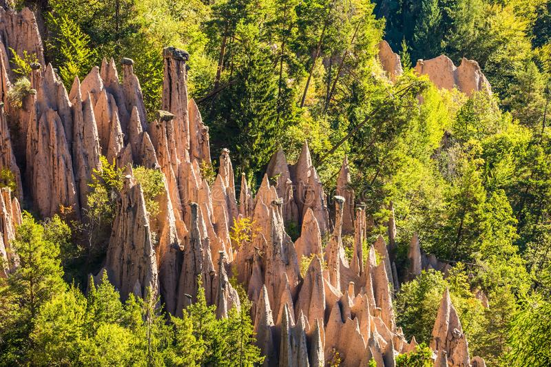 Renon's pillars at sunrise. The concept of ecological tourism. Magnificent Dolomites in Tyrol. Renon's earth pillars at sunrise. Journey to  magical fairy-tale stock photos