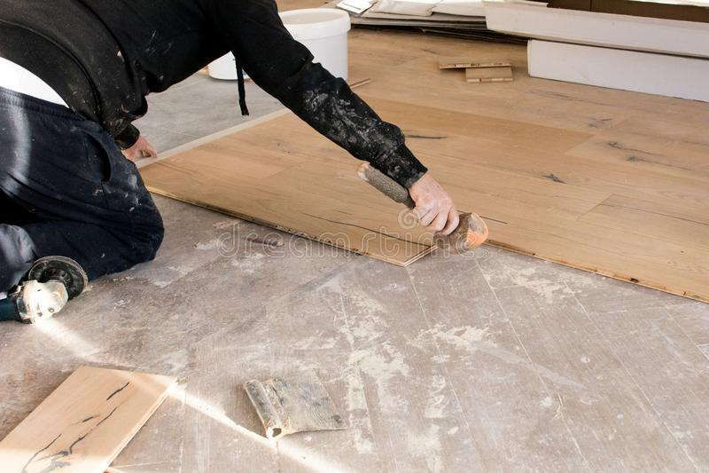 Renovering av en lägenhet, den kompetenta arbetaren använder en plast- hammare royaltyfria foton