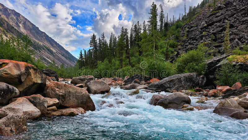 Rent vatten av en bergflod royaltyfri fotografi