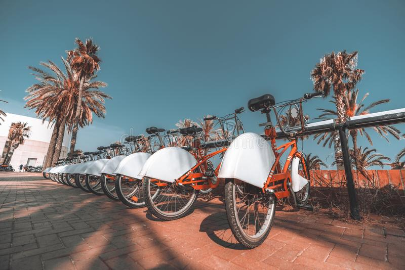 Rental wheels on the street of Barcelona royalty free stock image