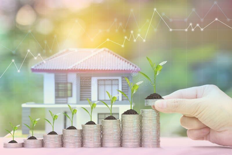 Rentevoet omhoog en Bankwezenconcept, Installatie het groeien op stapel van muntstukkengeld en modelhuis op natuurlijke groene ac royalty-vrije stock afbeeldingen