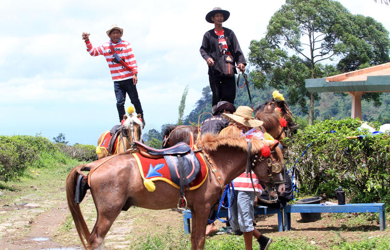 Renting horses. Residents renting horses to tourists in the mountains in Karanganyar, Central Java, Indonesia royalty free stock images