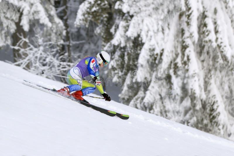 República Checa ENERO, 26 2013 Esquiador activo joven de la muchacha durante cuesta abajo fotografía de archivo libre de regalías
