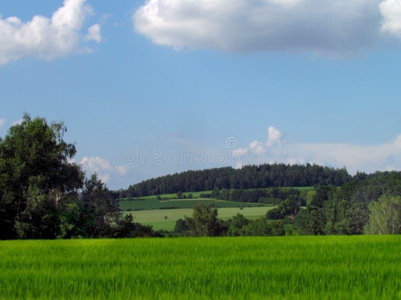 República Checa, paisaje montañoso del país hermoso del verano con el prado verde esmeralda, campos, intentos y nubes dramáti imagen de archivo libre de regalías