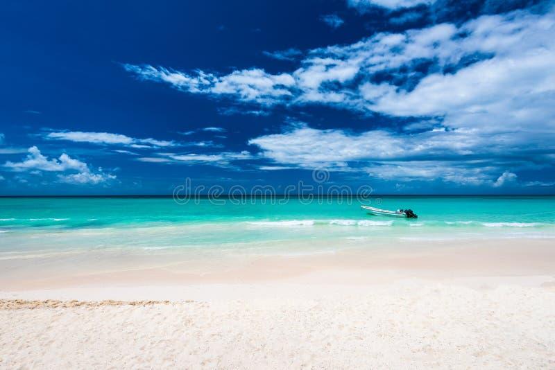 República Dominicana del mar de la palmera de la playa del centro turístico del paraíso foto de archivo