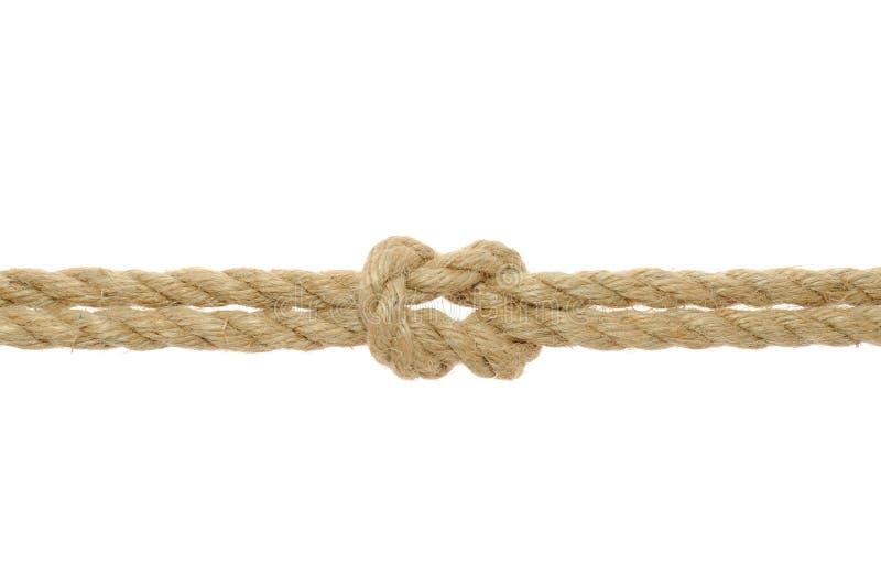 rep för jutefnurrarev royaltyfria bilder