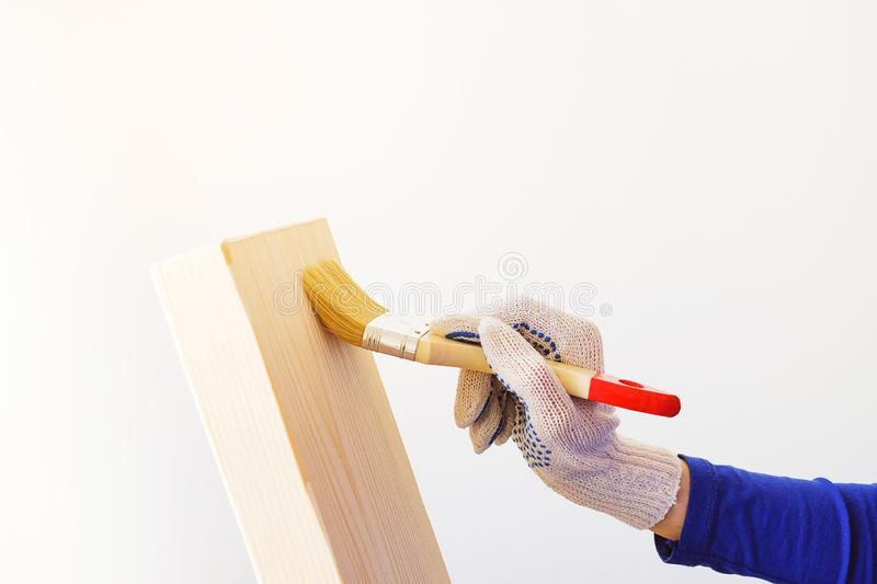 Repairman, carpenter, hired worker applies a protective varnish brush on a wooden Board. Women`s hands in protective gloves. Holding a Brush. The concept of royalty free stock photography