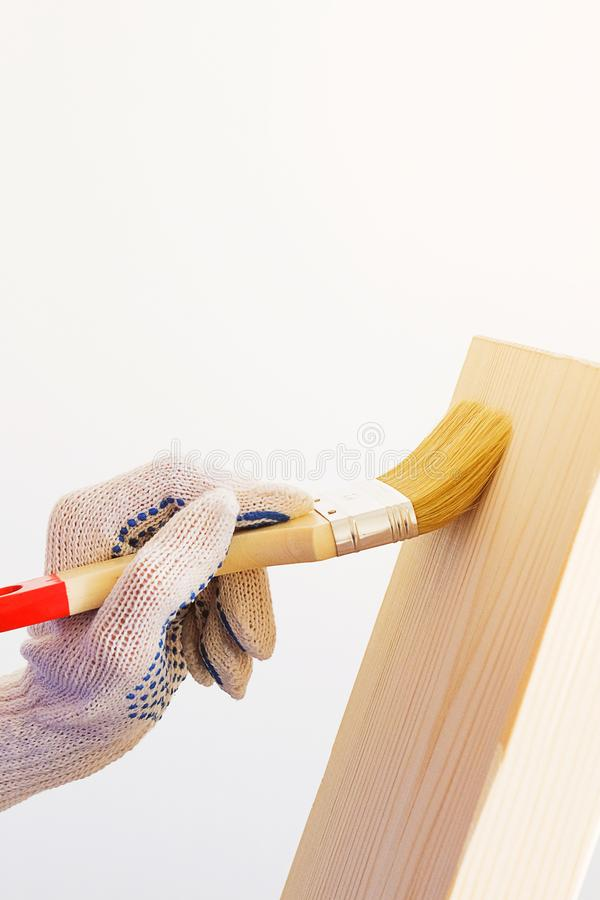 Repairman, carpenter, hired worker applies a protective varnish brush on a wooden Board. Women`s hands in protective gloves. Holding a Brush. The concept of royalty free stock photos