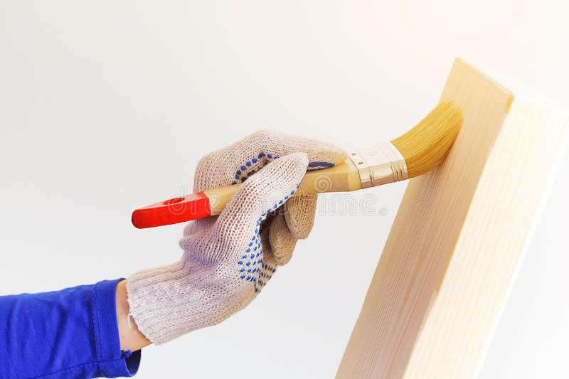 Repairman, carpenter, hired worker applies a protective varnish brush on a wooden Board. Women`s hands in protective gloves. Holding a Brush. The concept of stock photo