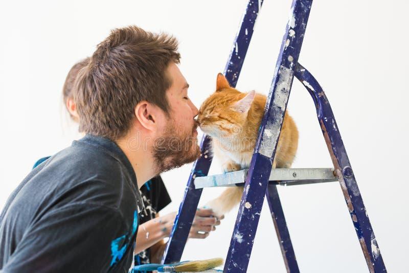 Reparatur, Erneuerung, Haustier und Liebespaarkonzept - junger Mann mit der Katze, die Reparatur tut und Wände malt stockbild