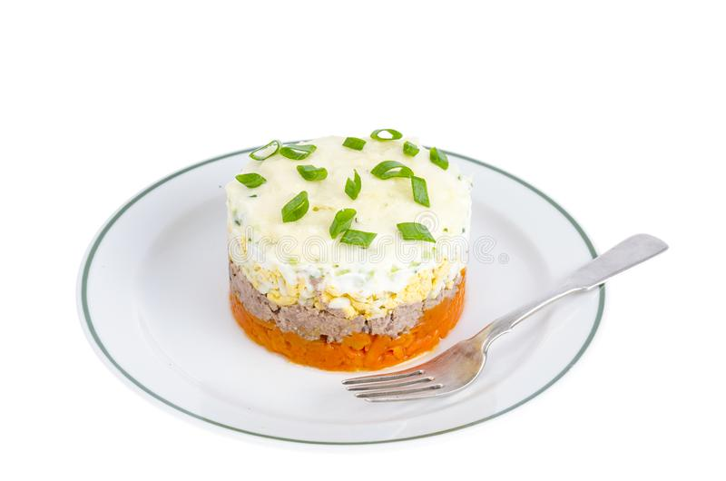 Reparta a salada mergulhada com peixes, cenouras e ovos imagens de stock