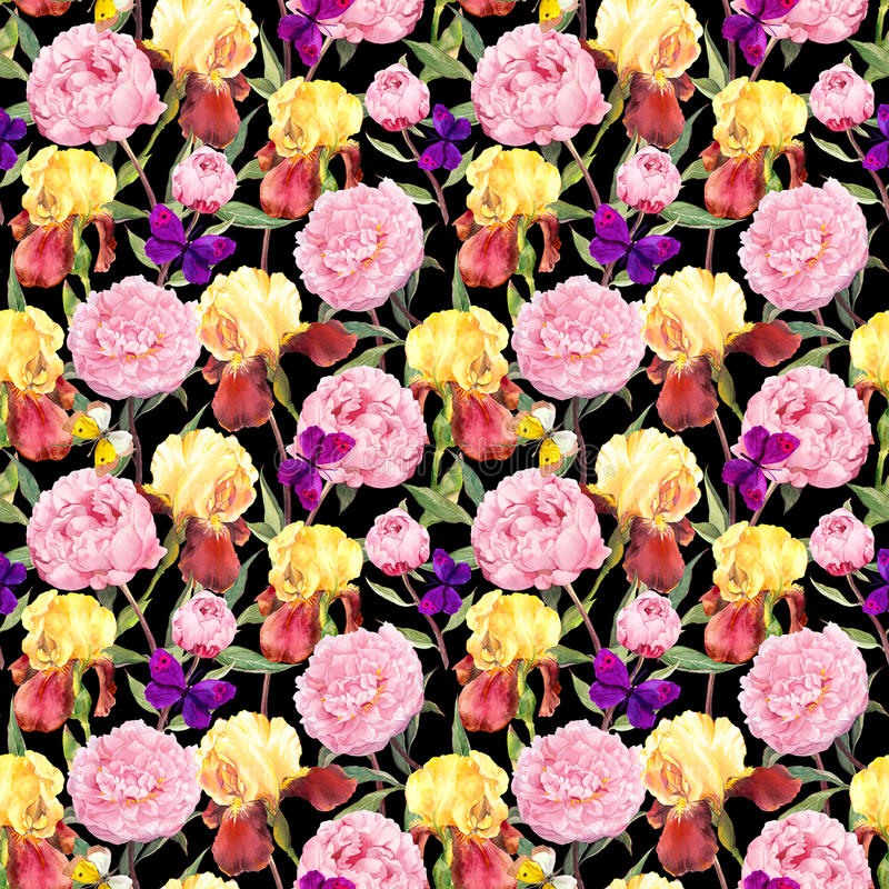 Repeating floral pattern. Peony flowers, irises and butterflies. Watercolor on black background royalty free stock photos
