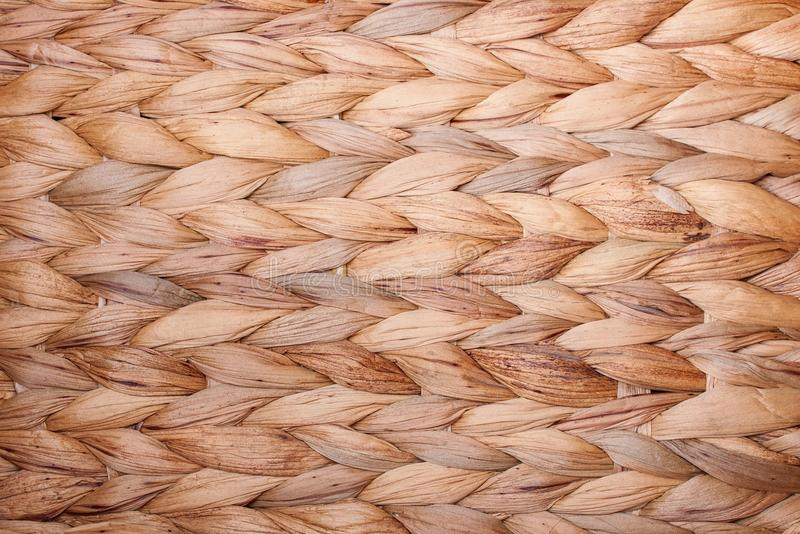 Repeating pattern of water hyacinth as a background - detail royalty free stock photo