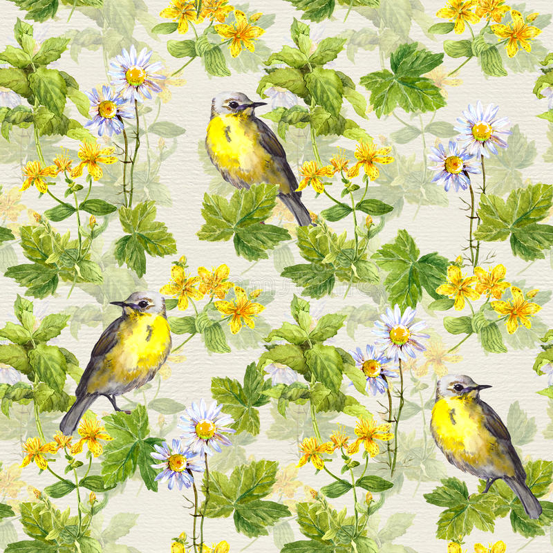 Repetitive pattern: wild herbs, flowers, grass, bird. Floral watercolour stock illustration
