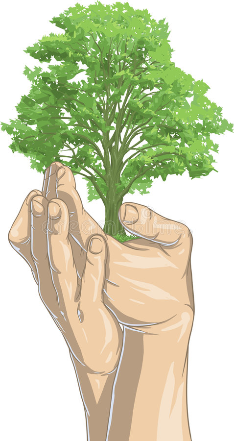 Replanting stock illustration