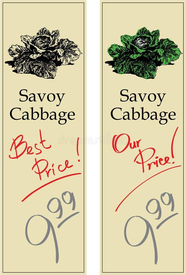 Repolho de Savoy ilustração stock