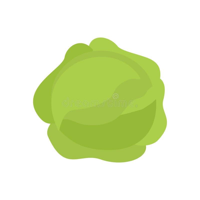 Repolho isolado Kale no fundo branco Vegetab verde útil ilustração stock