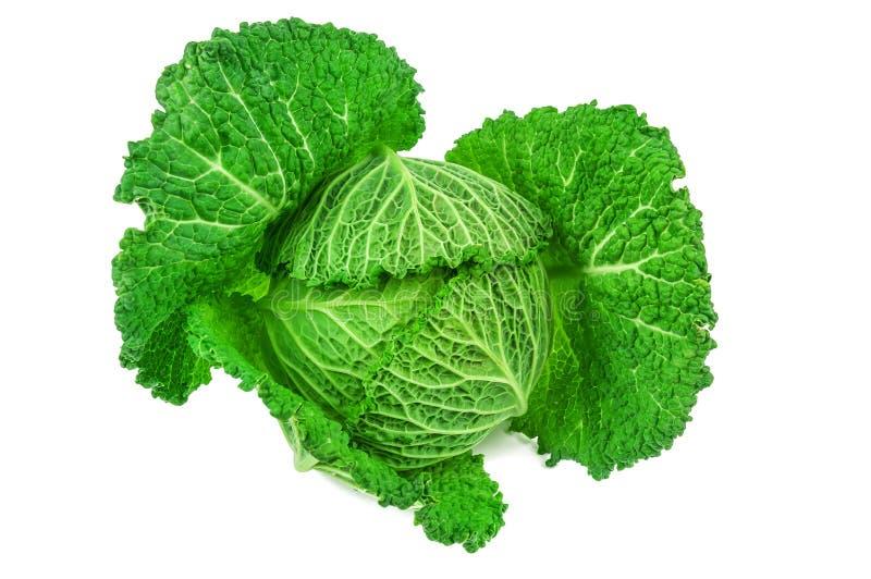 Repolho verde no branco imagens de stock royalty free