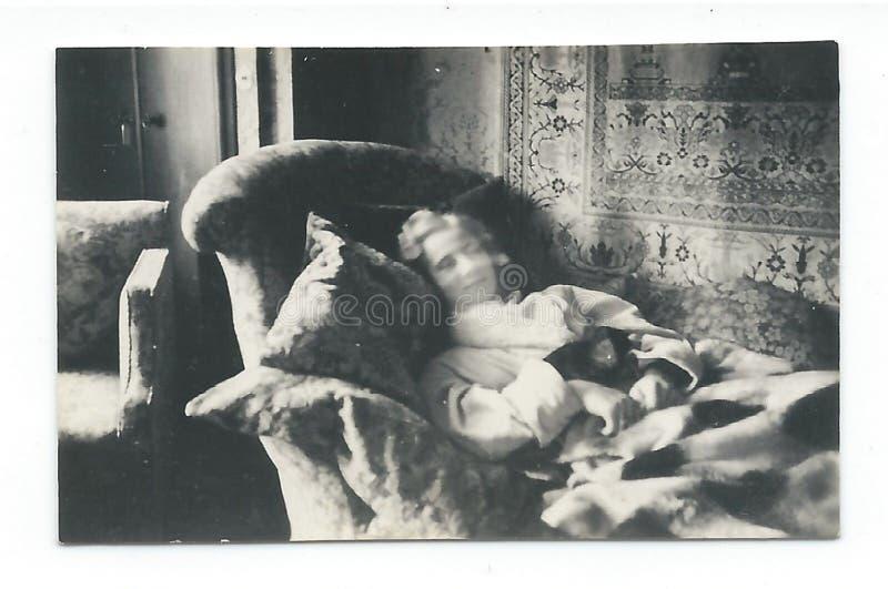 Repos de plaisance avec le chat. stock image