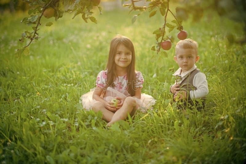 Repos de soeur et de frère dans le jardin photo libre de droits