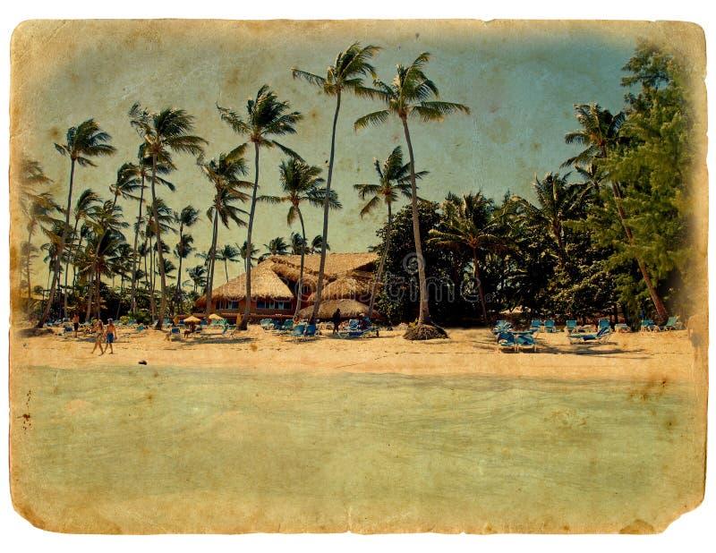 Reposez-vous sur la plage, présidences de salon, palmiers image libre de droits