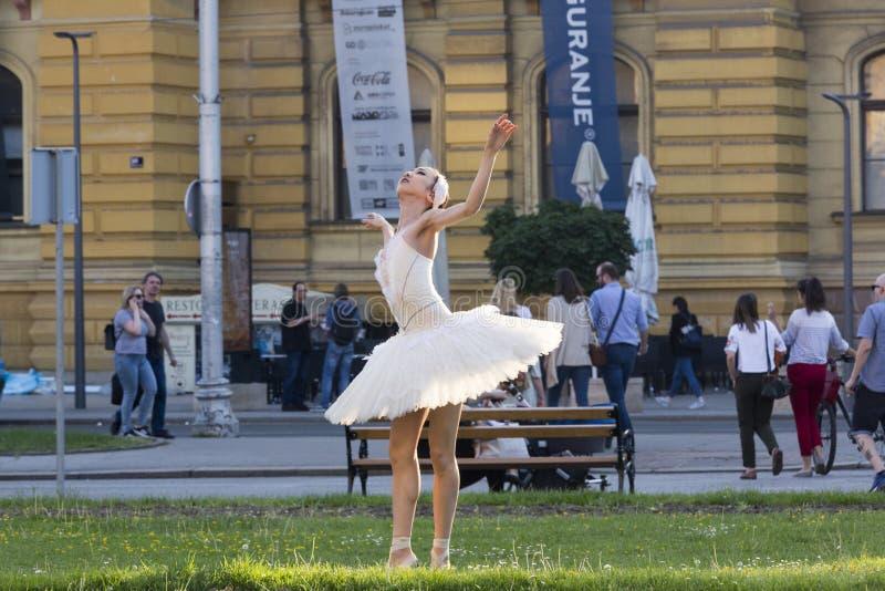 Représentation de ballet d'air ouvert image libre de droits