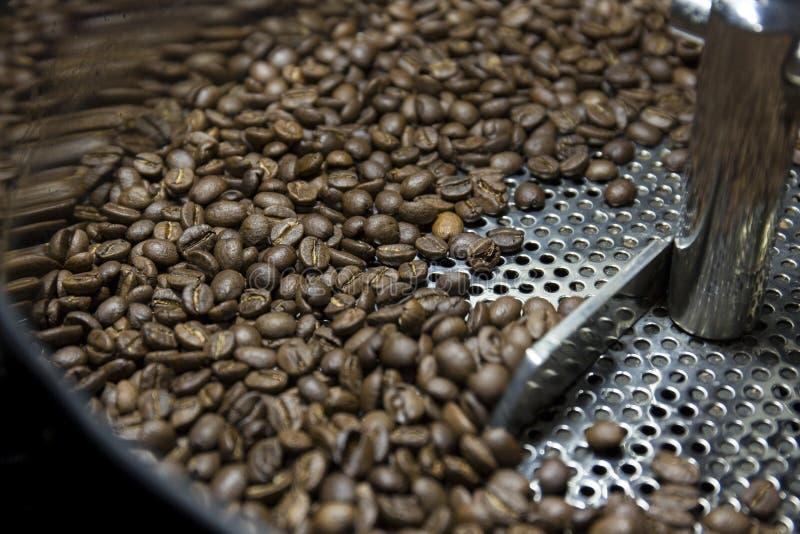 Repreensão do feijão de café fotos de stock royalty free