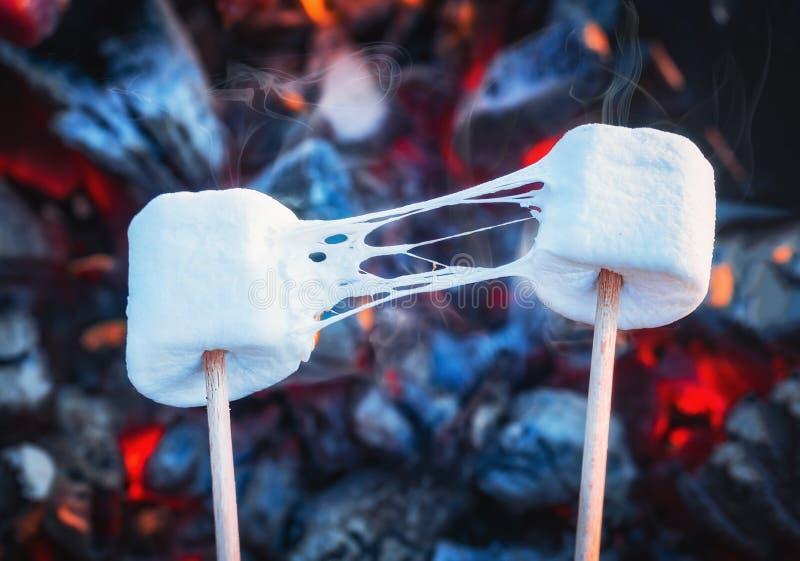 Repreensão elástico de dois marshmallows sobre chamas do fogo Marshmallow nos espetos roasted em carvões vegetais imagem de stock royalty free