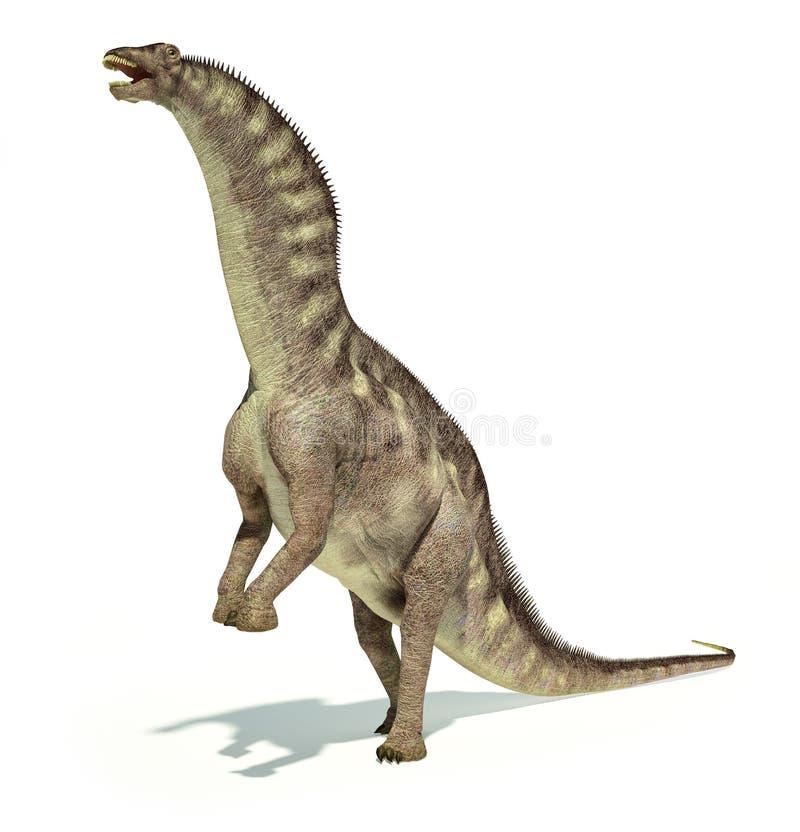 Representação Photorealistic de um dinossauro do Amargasaurus. Dynam ilustração do vetor
