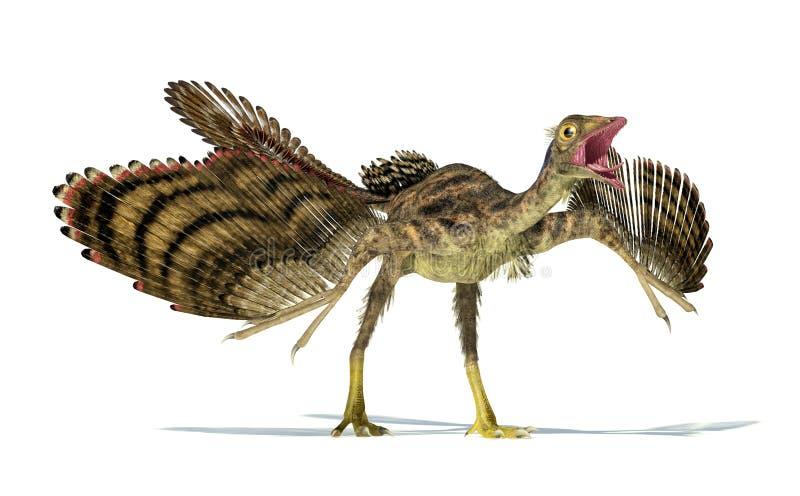 Representação Photorealistic de um dinossauro do Archaeopteryx. ilustração royalty free