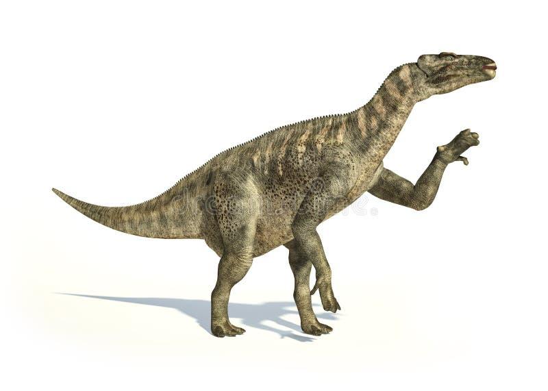 Representação photorealistic do dinossauro de Iguanodon, na posição dinâmica ilustração royalty free