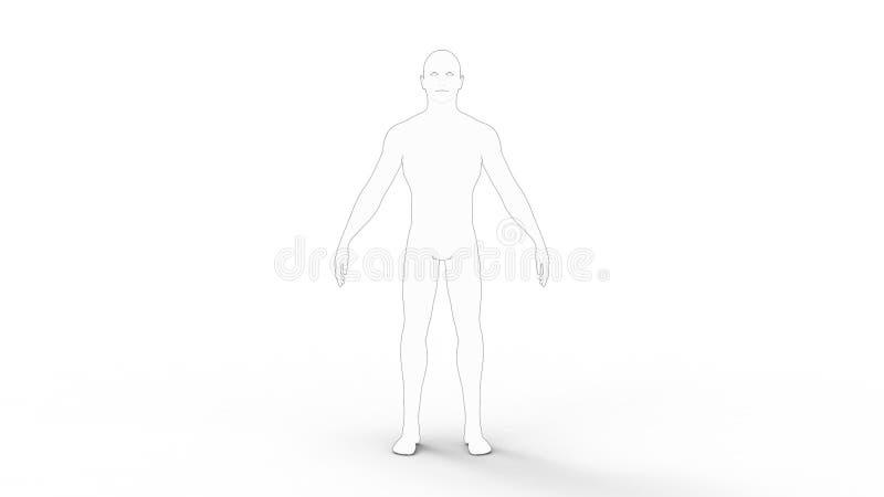 representación 3d de una persona del modelo del varón cad aislada en el fondo blanco stock de ilustración