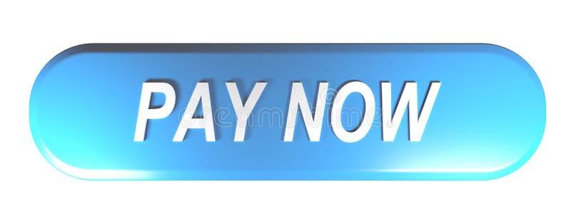 Representación redondeada azul 3D de la PAGA del botón del rectángulo AHORA - libre illustration