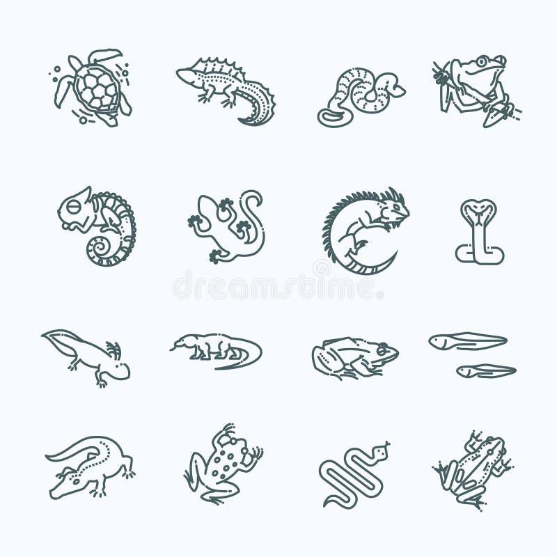 Reptil- und Amphibienikonen eingestellt Zeile Auslegung vektor abbildung