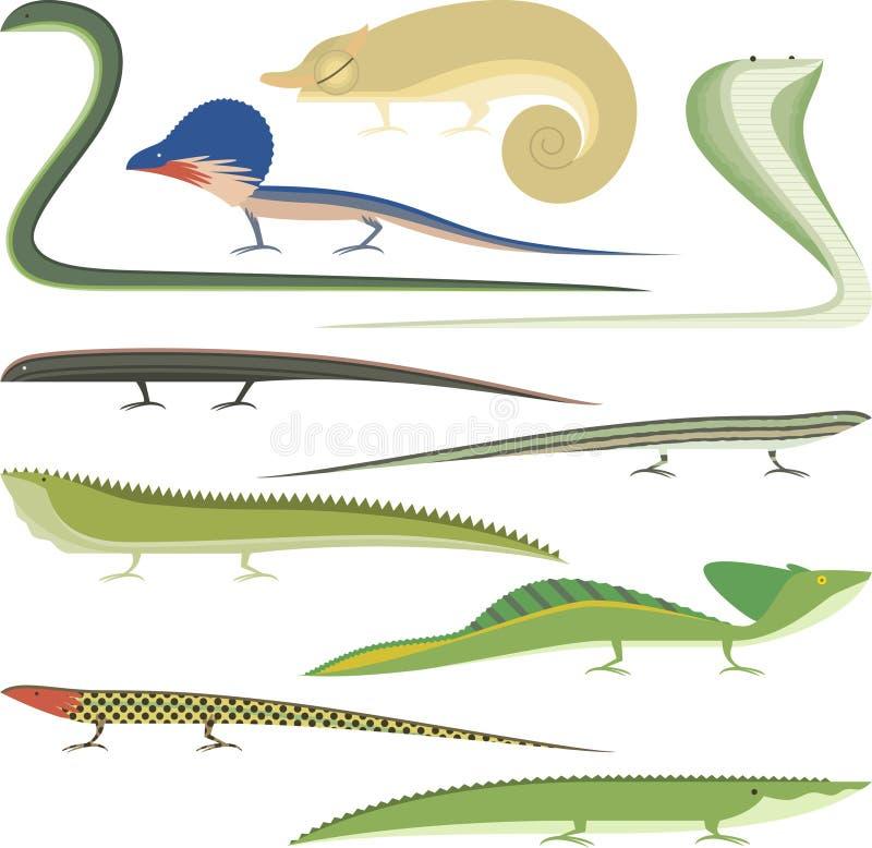 Reptile Cartoon Reptiles types set stock illustration