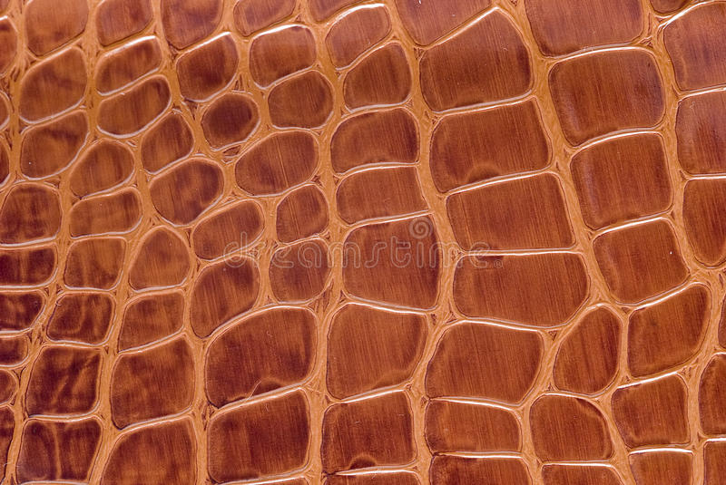 Reptile leather. royalty free stock photography