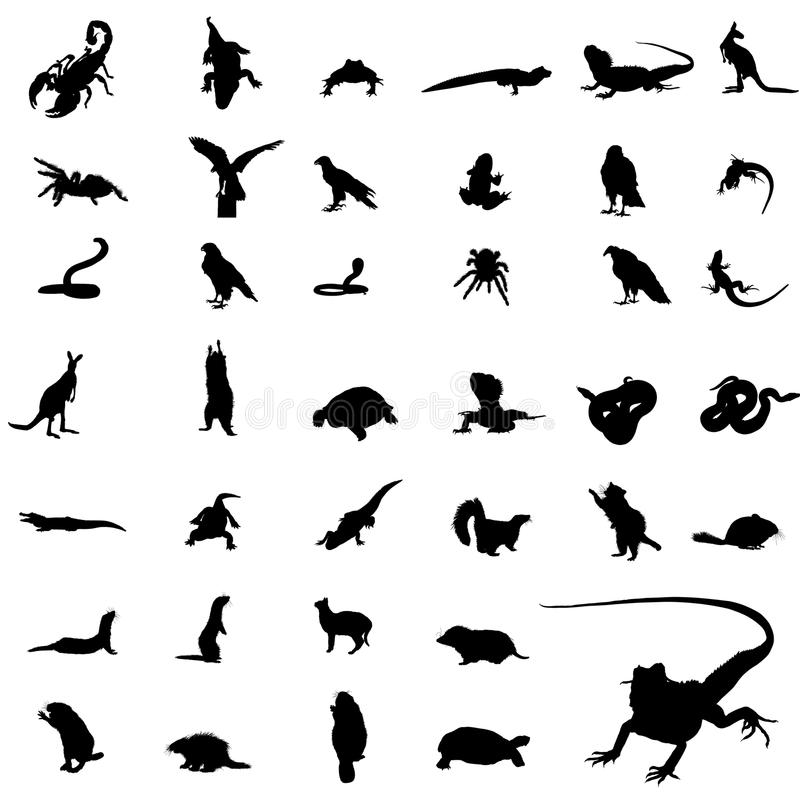 Download Reptile   silhouettes stock vector. Image of adventure - 12306629