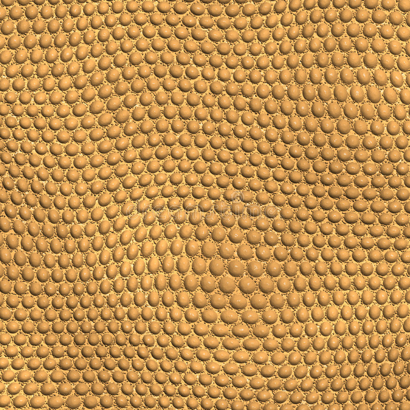 Reptile skin royalty free stock photography