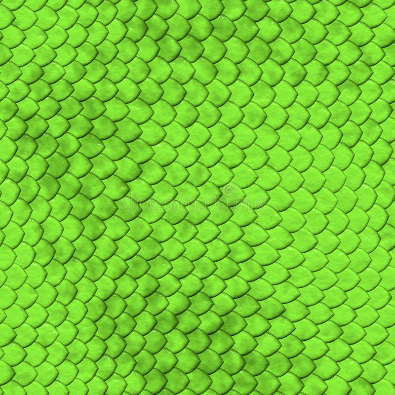 Free Reptile Skin Texture Royalty Free Stock Photography - 14924967