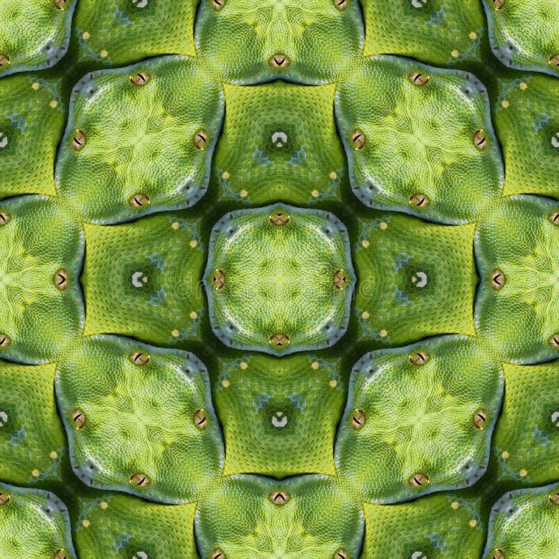 Reptilian Huidpatroon royalty-vrije stock afbeelding