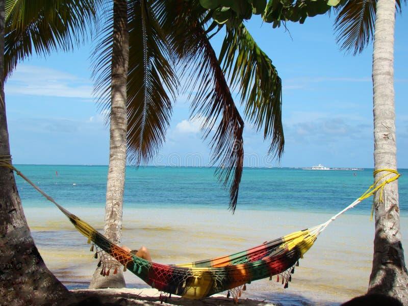Repubblica dominicana di Punta Cana fotografia stock libera da diritti