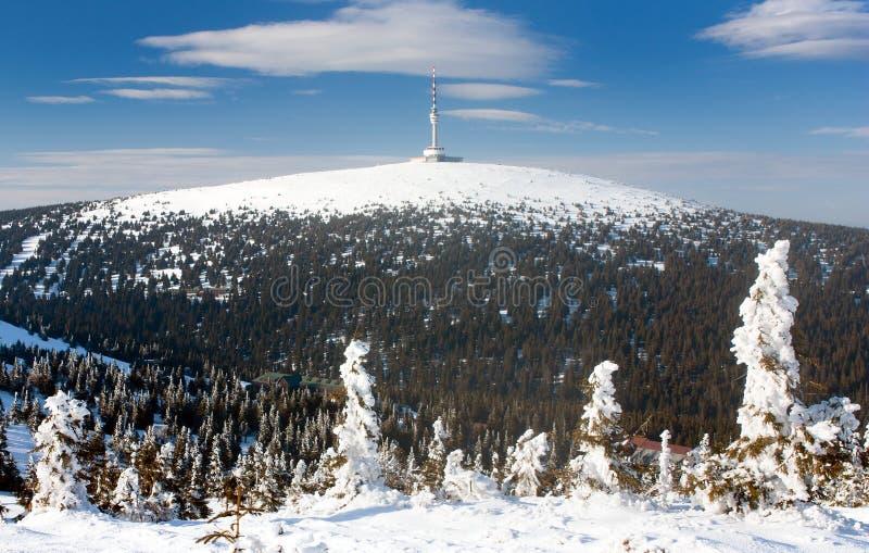 Republika Czech góra Praded, Jesenik - zdjęcie royalty free