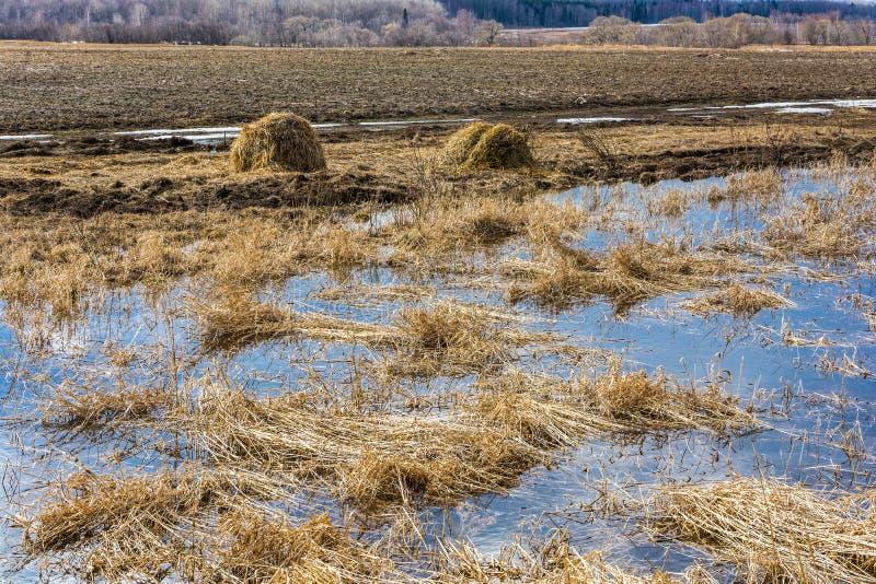 republika Mołdawii krajobrazowa wiejskiej zdjęcie stock