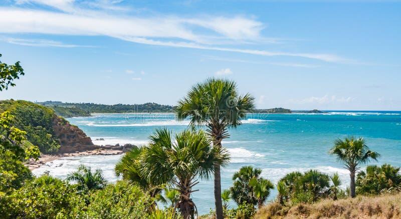 Republiki Dominikańskiej plaża zdjęcie royalty free